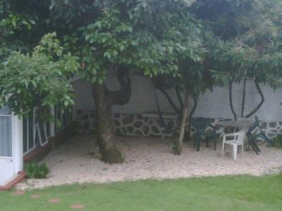 Piedra decorativa para jardin - Piedra decorativa jardin ...